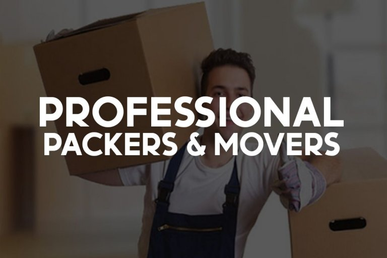 professional-packers-&-movers